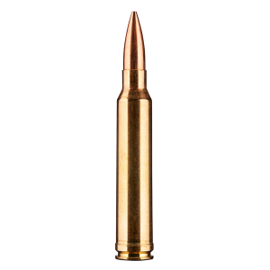 Nexus .300 Win Mag Cartridge